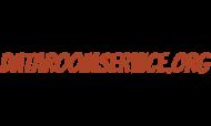 dataroomservice.org